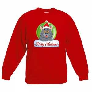 Foute kersttrui merry christmas grijze kat / poes kerstbal zwart kind